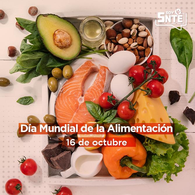 FAO: Construir un futuro con suficientes alimentos nutritivos, inocuos y asequibles para todos