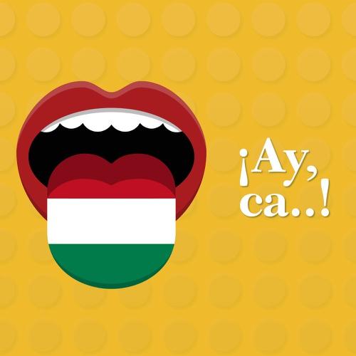 ¿Las expresiones vulgares hacen especial al español mexicano?