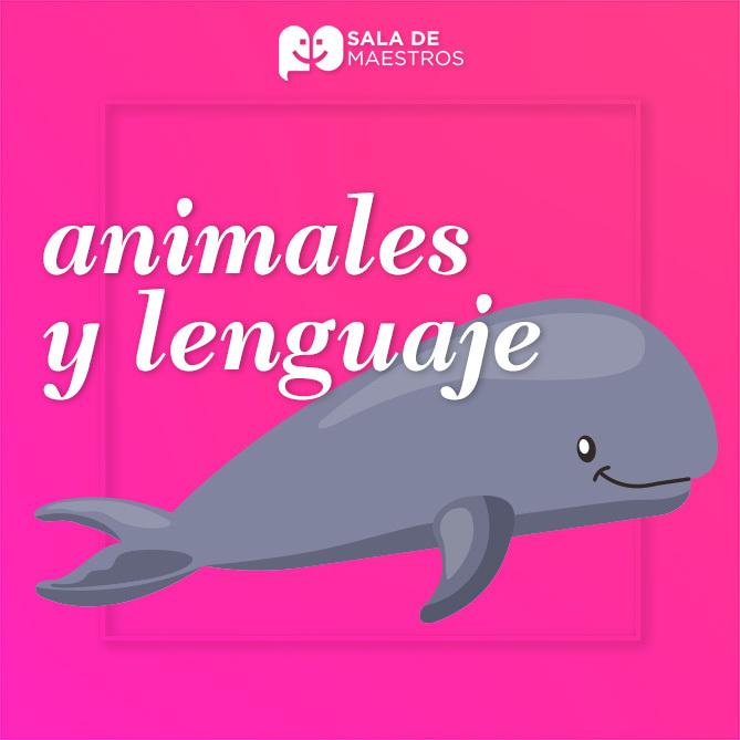 Lenguaje, comunicación y delfines